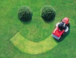 Lawn Care in Glendale